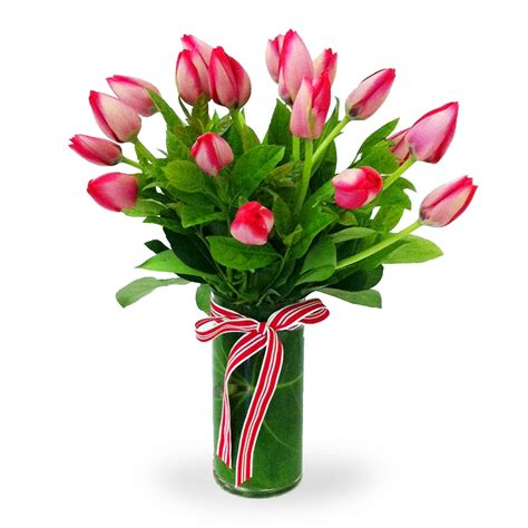 17 vased tulips bloomer s flower shop