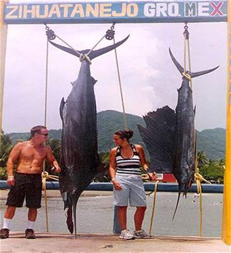 foto de fishing london charter and guide service zihuatanejo sportfishing charters in ixtapa zihuatanejo