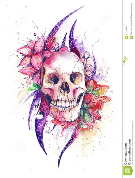 skull with flowers stock illustration image 47288941