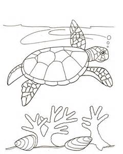 rules jungle turtle pictures print color
