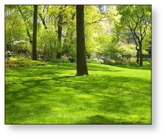 landscaping medford oregon bumgardner residential landscaping medford ashland oregon