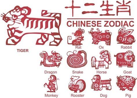 zodiac signs  vector    vector