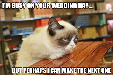 Grumpy Cat Wedding Meme - i m busy on your wedding day but perhaps i can make