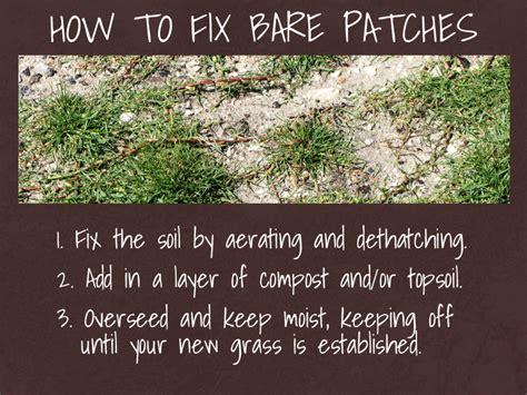 how to repair how to take care of granite countertops lawn repair guide world of lawn care