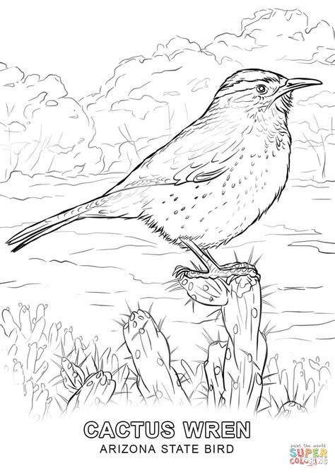 arizona state bird coloring page free printable coloring
