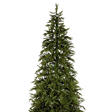 tree 10ft pine display tree 3m 10ft time uk