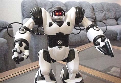 Ces 2007 Wowwees Robopanda by Codename Wowwee Robot Reviews Robosapien Original 2004