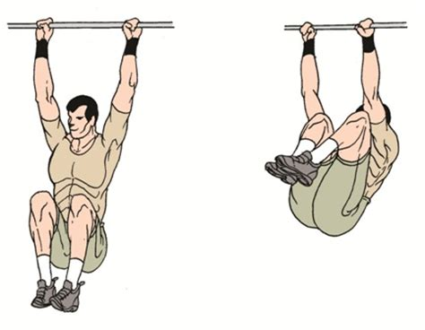 Abs Bench Exercises Hanging Reverse Crunches Exercise To Build Lower Abs