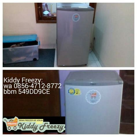 kiddy freezy sewa freezer asi cooler box asi jogja