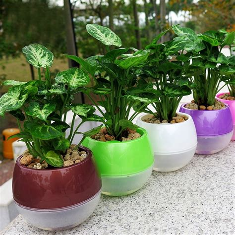 mkono pcs  watering pot automatic planter plant