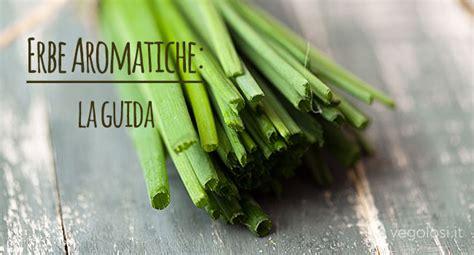 erbe in cucina erbe aromatiche in cucina come usarle vegolosi it