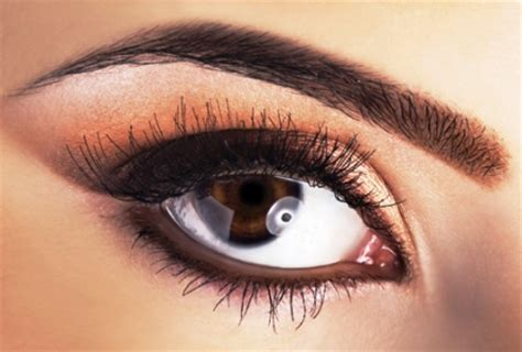 how to get a perfect arch for your eyebrows 14 steps how to get perfect arches for your eyebrows