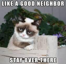Image source facebook grumpy cat