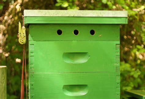 gentle warning  upper entrances honey bee suite