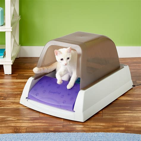 Cat Tembok Avian Taupe 332 scoopfree self cleaning cat litter box privacy taupe chewy