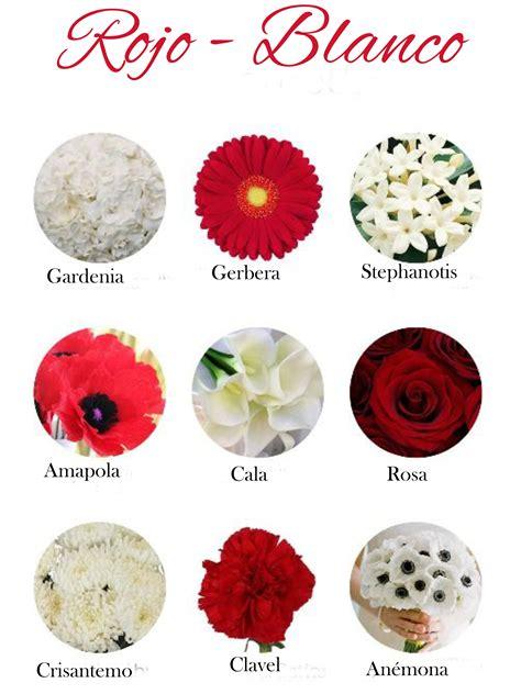 imagenes todas rojas flores de color rojo y blanco red flowers and white