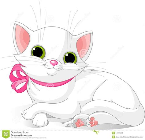 Very Cute White Cat Royalty Free Stock Photography   Image