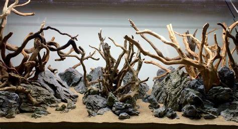 desain kayu aquascape mengenal hardscape pada aquascape taman air aquascape