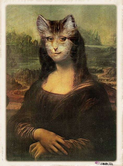mona cat 839 best variations on a theme images on pinterest