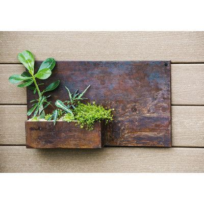 Garden Wall Planters Metal by The 25 Best Metal Wall Planters Ideas On