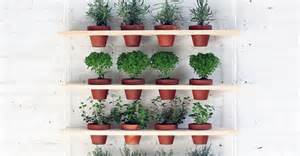 herb shelf 24 indoor herb garden ideas to look for inspiration balcony garden web