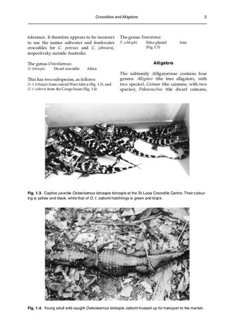 libro alligators and crocodiles national libro crocodiles biology husbandry and diseases