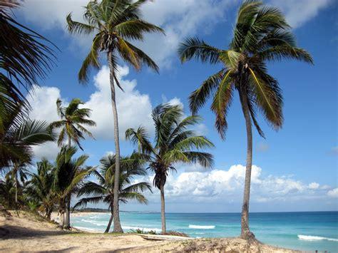 imagenes naturales wikipedia maravillas naturales de am 233 rica y el caribe taringa