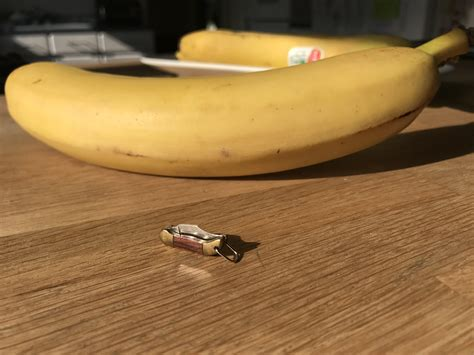 these tiny bananas banana for scale album on imgur are we still posing small knives banana for scale knives
