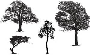 Tree master pack free vector in encapsulated postscript eps eps