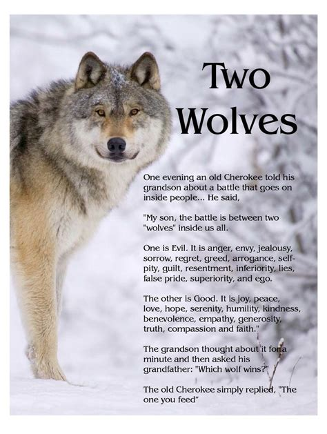 elizabeth s wolf a novel of the breeds books 17 best ideas about two wolves on wolf