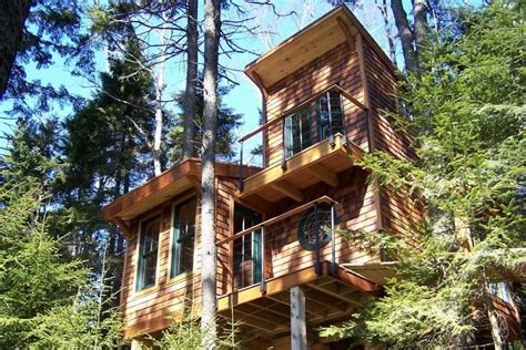 tiny tree house a tiny house in the trees david matero small house bliss