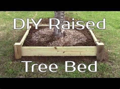 diy raised tree bed  planter tree bed oak trees