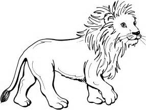 what color are lions about lions