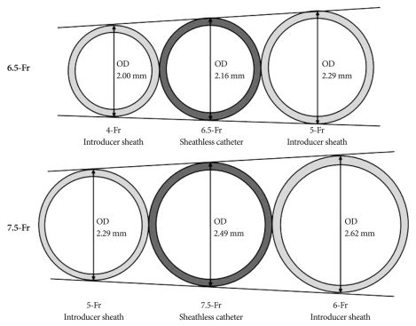 Outer Size comparison of outer diameter od between introducer sheath and sheathless guiding catheters