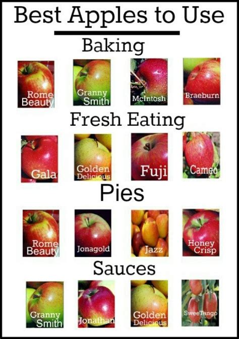 best apples to use for baking f fruity pinterest