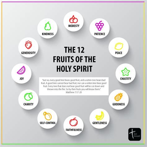 12 fruits of the tree of 59 best images about catholic infographics on