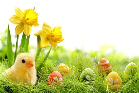 free printable easter flowers easter flower 19 free wallpaper hdflowerwallpaper com