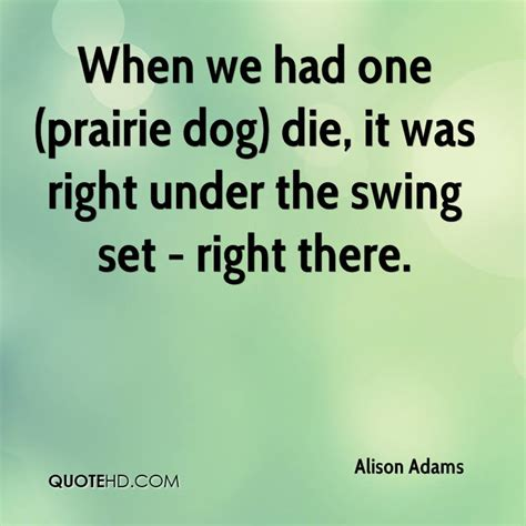 swing quotation quotes about swing sets quotesgram