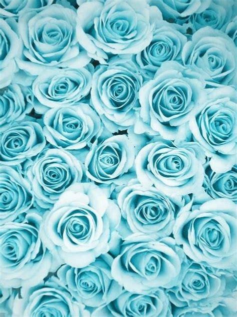 wallpaper blue we heart it εικόνα μέσω we heart it blue flowers light pattern