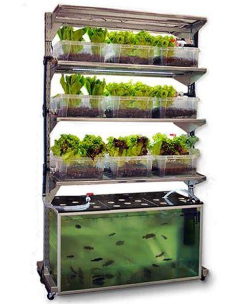 Ikea Hydroponics Garden 在家打造您的魚菜共生系統 材料就從ikea買 水耕 魚菜共生 植物工廠 水植 水生植物 Gogreen Tw