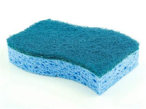 Kitchen Sponge Bacteria by Top 5 Most Germ Infested Hotspots In Your Home
