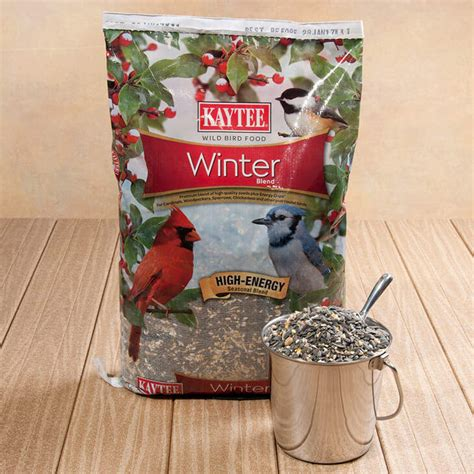 will feeding the birds during the winter months help them