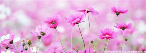 imagenes de flores bonitas para portada portadas de flores tu portada face