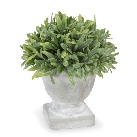 rosmarino vaso rosmarino artificiale in vaso h 5 cm maisons du monde