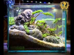 nano aquascapes aquascape contest 2016 nano tank