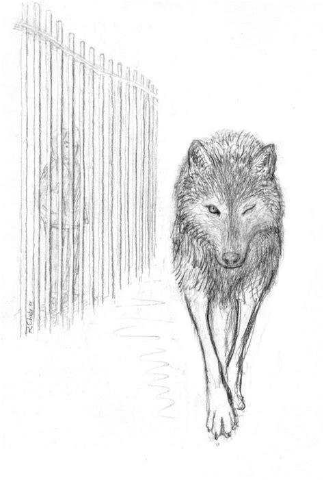Couvertures, images et illustrations de L'Œil du loup de