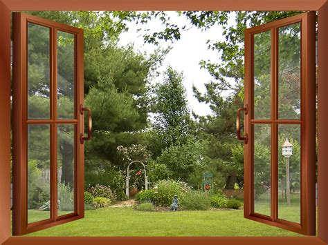 Backyard Window by Wall26 Prints Framed Canvas Prints