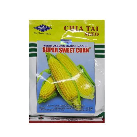 Benih Jagung Manis Sweet Boy benih jagung sweet corn 250 gram kapal terbang