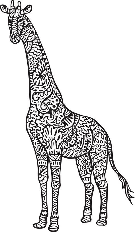 giraffe eating coloring pages giraffe eating grass coloring page giraffe eating
