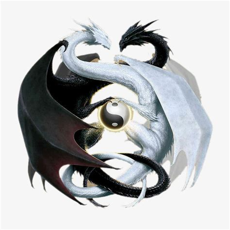 double dragon et yin yang dessin de peints 224 la main yin